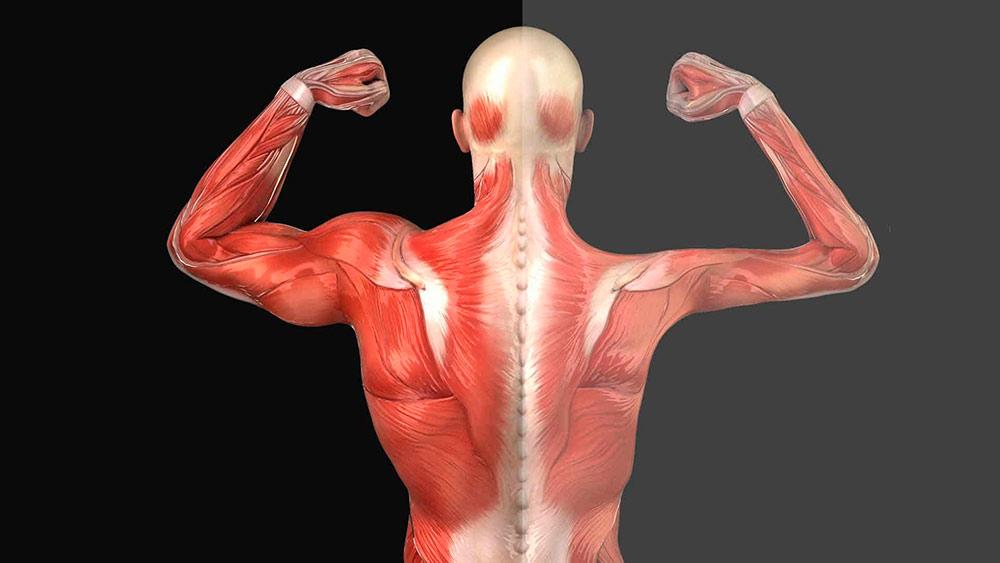 Признаки повреждения нерва