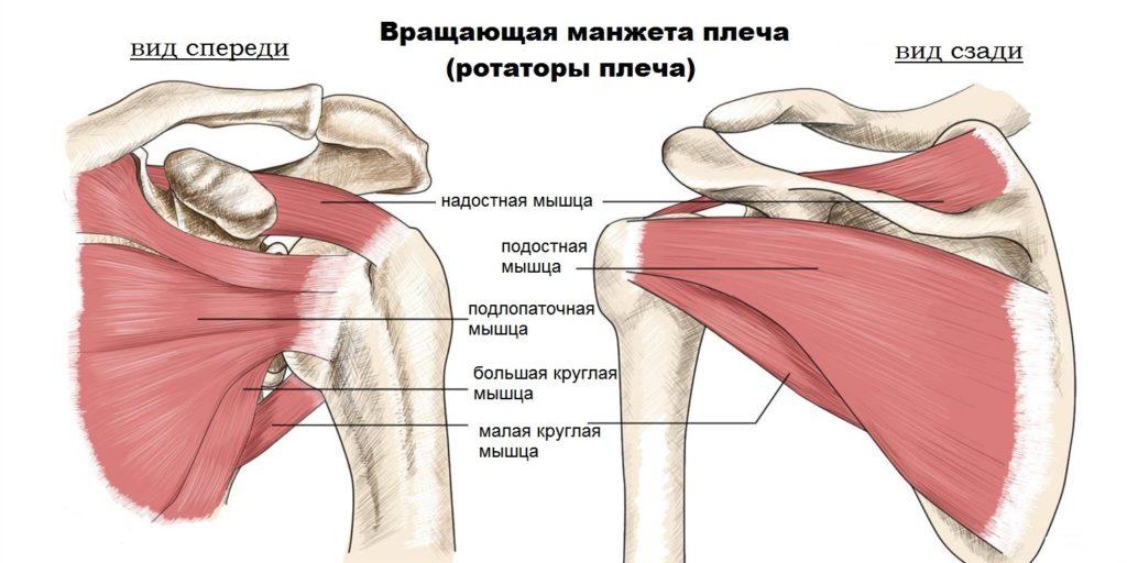 Лечение разрыва ротаторной манжеты