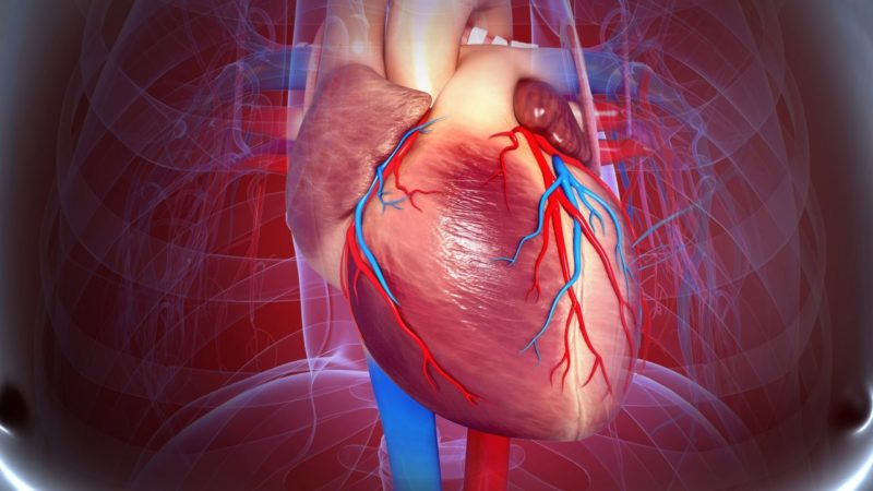 Ревматическая болезнь сердца