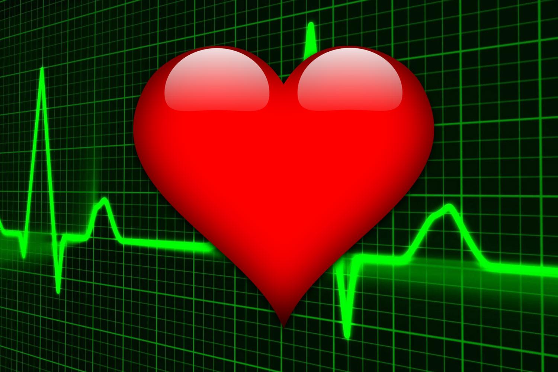 Электрическая проводимость сердца